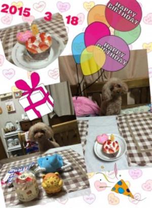 2015_3_18_cookie8